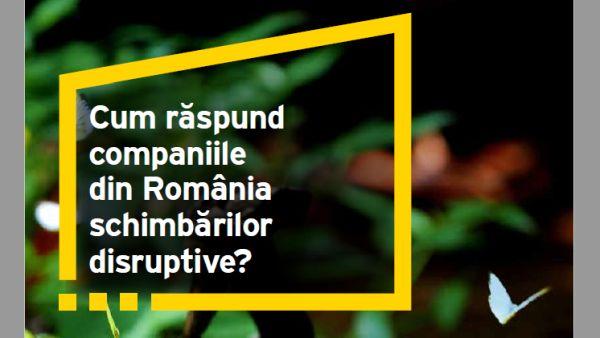 Studiu EY: doar 48% dintre companiile din Romania au o agenda de schimbare disruptiva a organizatiei