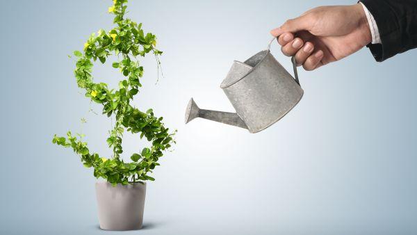 Cum arata pachetul salarial al top managerilor romani: 59% venit fix, 41% bonusuri