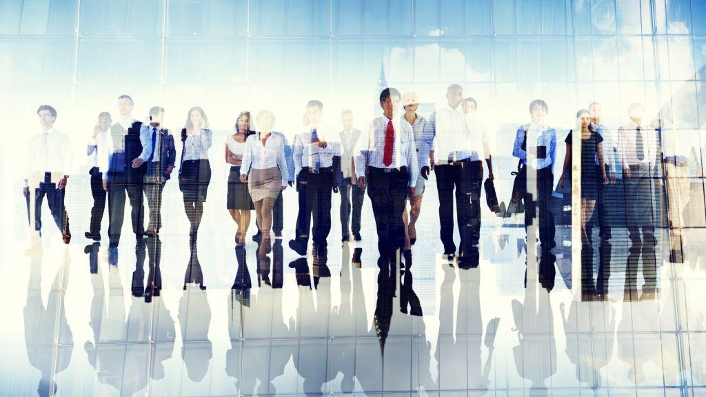 Comertul, serviciile si constructiile – domeniile in care aplica majoritatea candidatilor de peste 45 de ani