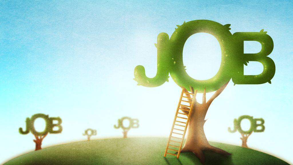 Studiu BestJobs si Boston Consulting Group: Doi din trei romani sunt dispusi sa o ia de la zero in cariera, ca raspuns al schimbarilor tehnologice